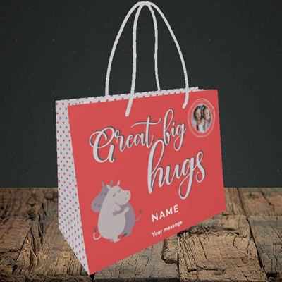 Picture of Big Hugs, Thinking of You Design, Small Landscape Gift Bag