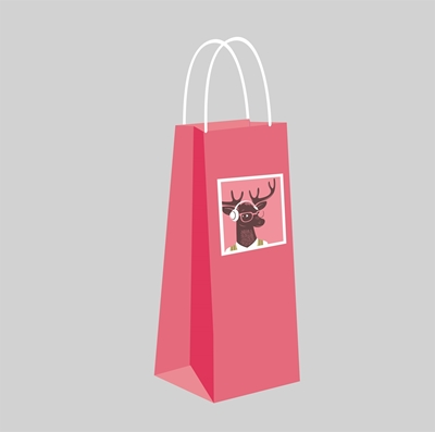 Picture for category Gift Bag Bottle Bag