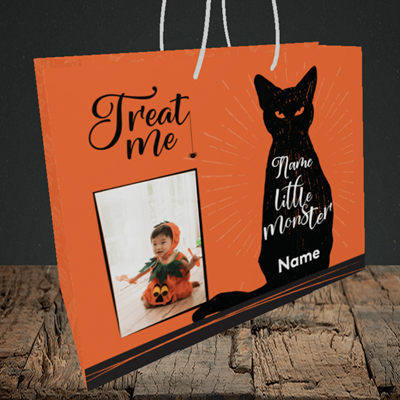 Picture of Cat, Halloween Design, Medium Landscape Gift Bag