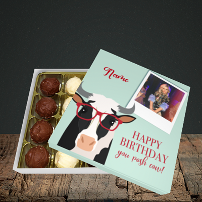Picture of Cow, Birthday Design, Choc 16